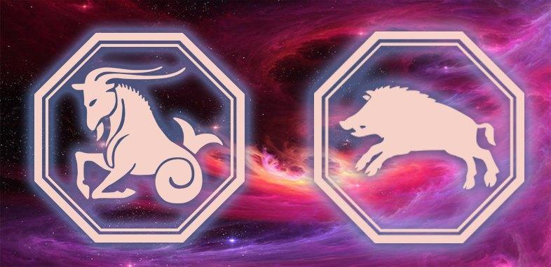 Козерог - Кабан (свинья): Характеристика
