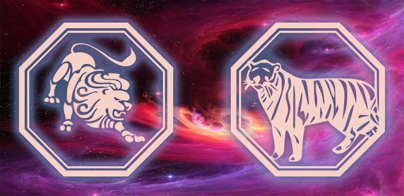 Лев - Тигр женщина