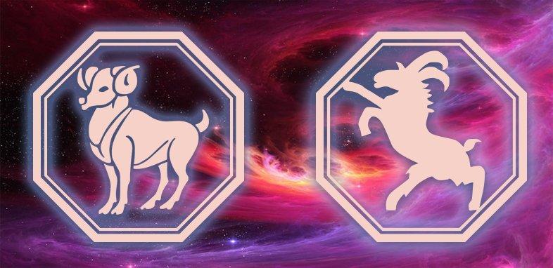 Овен - Коза (Овца): Характеристика