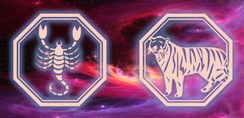 Скорпион - Тигр: Характеристика