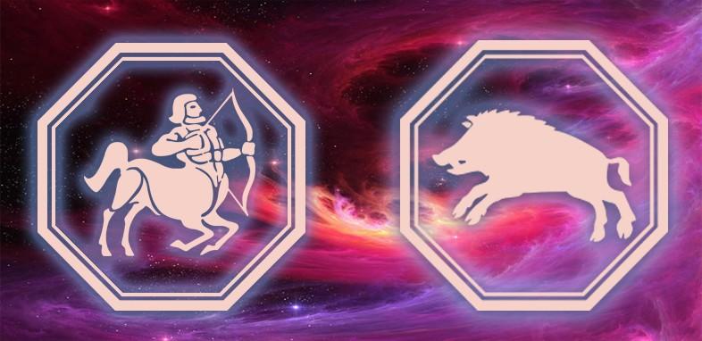 гороскоп год свиньи для стрельца