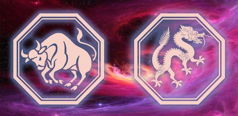 гороскоп дракона тельцы