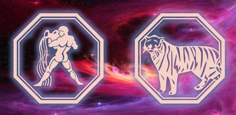 Водолей - Тигр: Характеристика