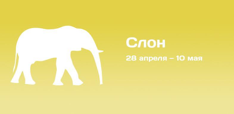Слон по индийскому гороскопу