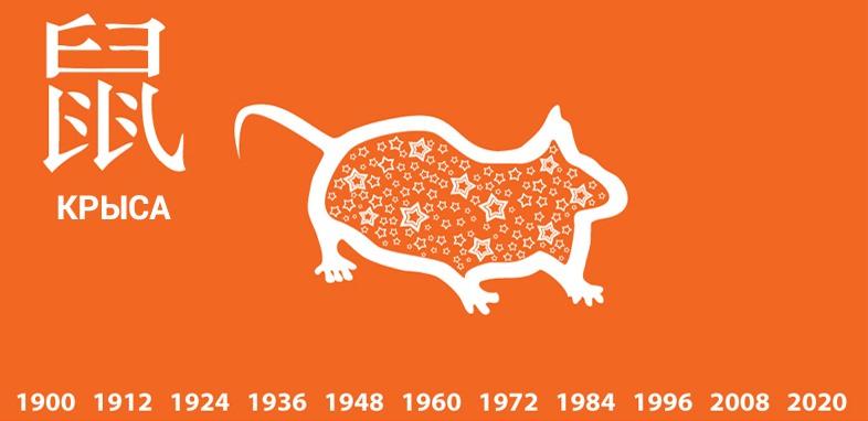 Год Крысы (Мыши): какие года рождения, характеристика знака