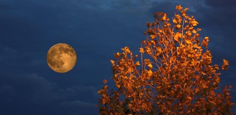Лунный календарь на 1 октября