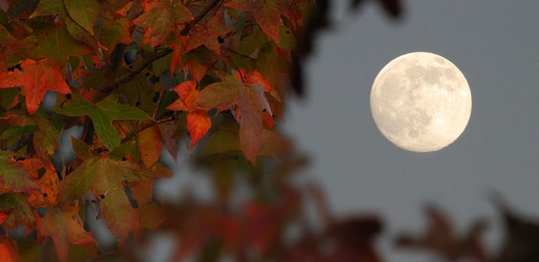 Лунный календарь на 14 сентября